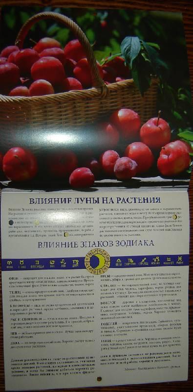 Иллюстрация 1 из 6 для Календарь. 2010 год. Лунный календарь (30909) | Лабиринт - сувениры. Источник: vybegasha