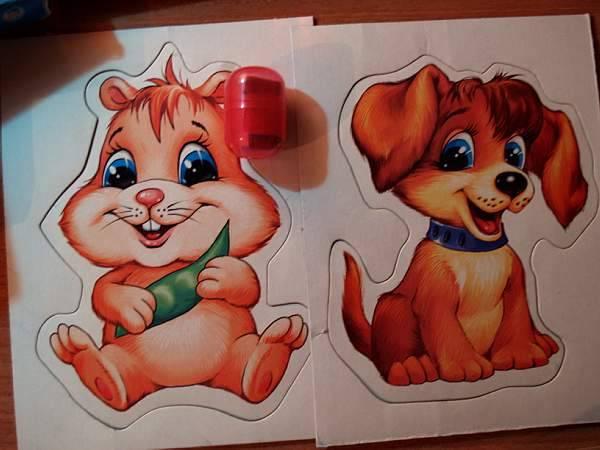 Иллюстрация 1 из 21 для Познаем с рождения: Животные в доме - Л. Малинина | Лабиринт - игрушки. Источник: Cовушка