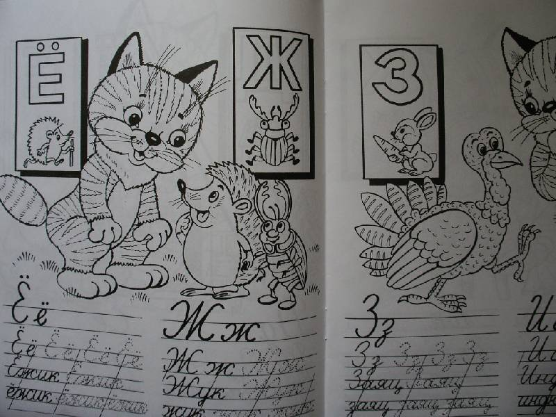 Иллюстрация 1 из 3 для Кошкин алфавит | Лабиринт - книги. Источник: Tiger.
