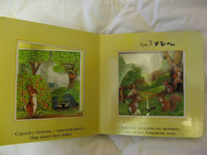 Иллюстрация 1 из 19 для Заблудившийся зайка. Волшебное окошко - Стюарт Коули   Лабиринт - книги. Источник: Каприза