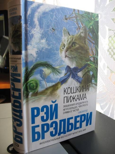 Иллюстрация 1 из 4 для Кошкина пижама - Рэй Брэдбери   Лабиринт - книги. Источник: Брагина  Дарья Валерьевна