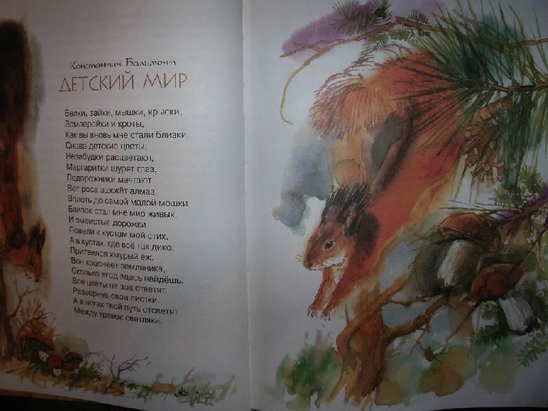 Иллюстрация 1 из 21 для Кот Ворюга: стихи, рассказы, сказки о животных | Лабиринт - книги. Источник: Tiger.