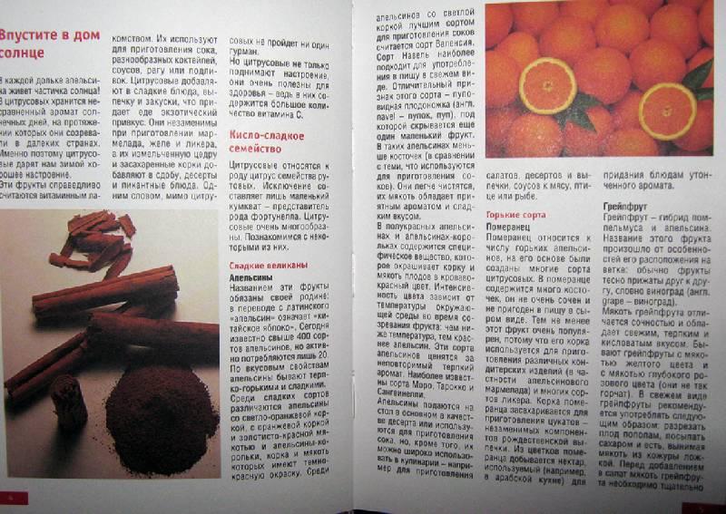 Иллюстрация 1 из 21 для Лучшие рецепты из лимонов и апельсинов | Лабиринт - книги. Источник: Спанч Боб