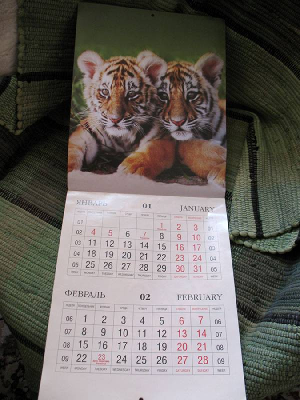 "Иллюстрация 1 из 18 для Календарь 2010 ""Год Тигра"" | Лабиринт - сувениры. Источник: Angostura"