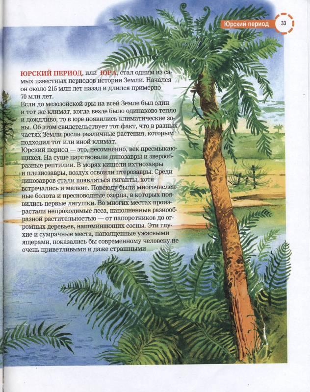 Иллюстрация 1 из 26 для Стереоэнциклопедия. Динозавры - Анна Тышко | Лабиринт - книги. Источник: РИВА