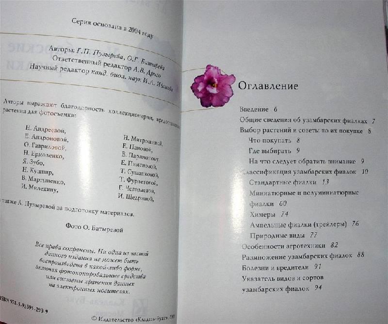 Иллюстрация 1 из 15 для Узамбарские фиалки - Пузырева, Батырева | Лабиринт - книги. Источник: Rocio