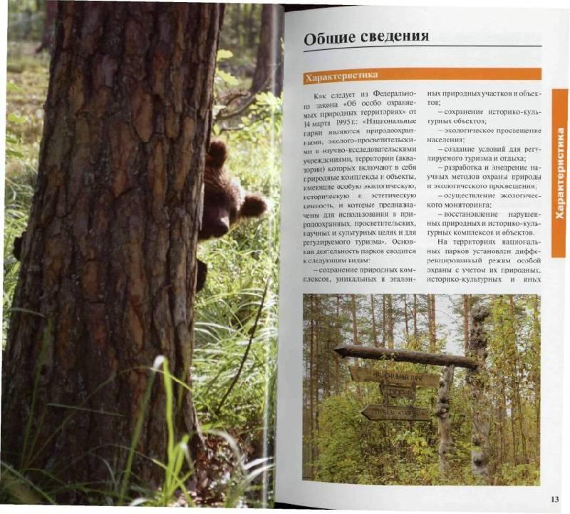 Иллюстрация 1 из 37 для Национальные парки России: Северо-Запад и Центр | Лабиринт - книги. Источник: Юта