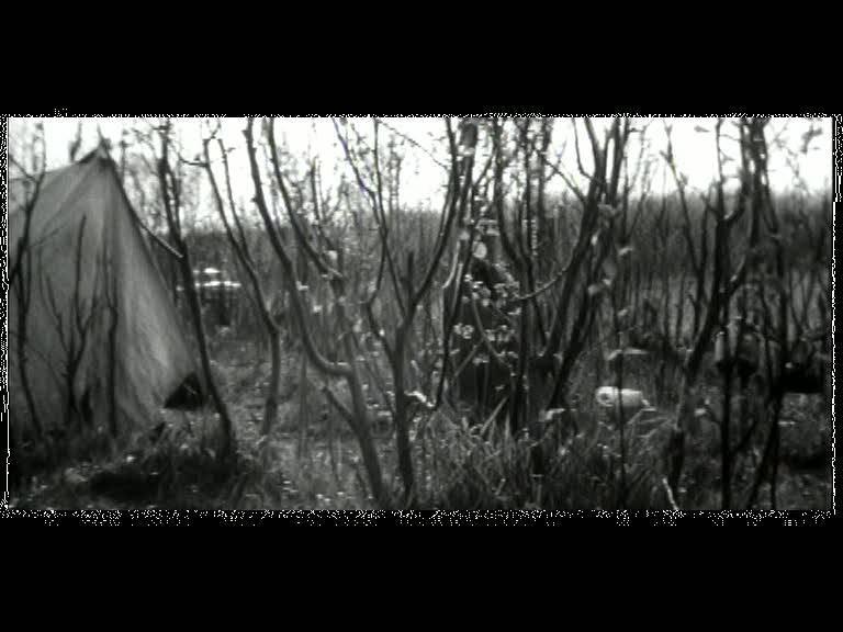 Иллюстрация 1 из 18 для Ошибка резидента (DVD) - Вениамин Дорман | Лабиринт - видео. Источник: Флинкс