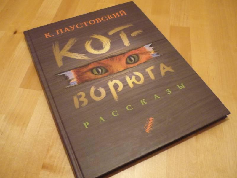 Книга коте ворюге.