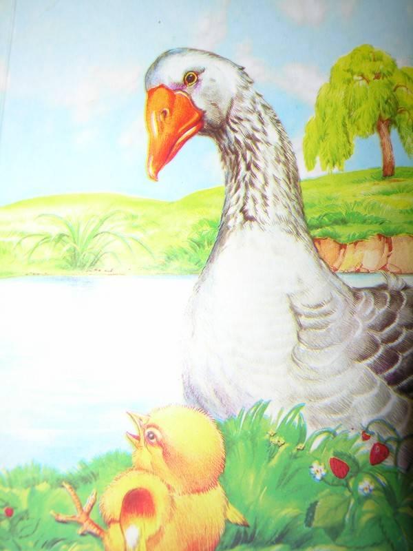 Иллюстрация 1 из 3 для Загадки, стишки для самых маленьких   Лабиринт - книги. Источник: Лампапулька