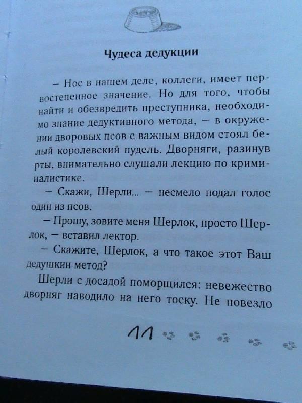 Иллюстрация 1 из 14 для Город Собак - Анна Никольская-Эксели   Лабиринт - книги. Источник: Обычная москвичка