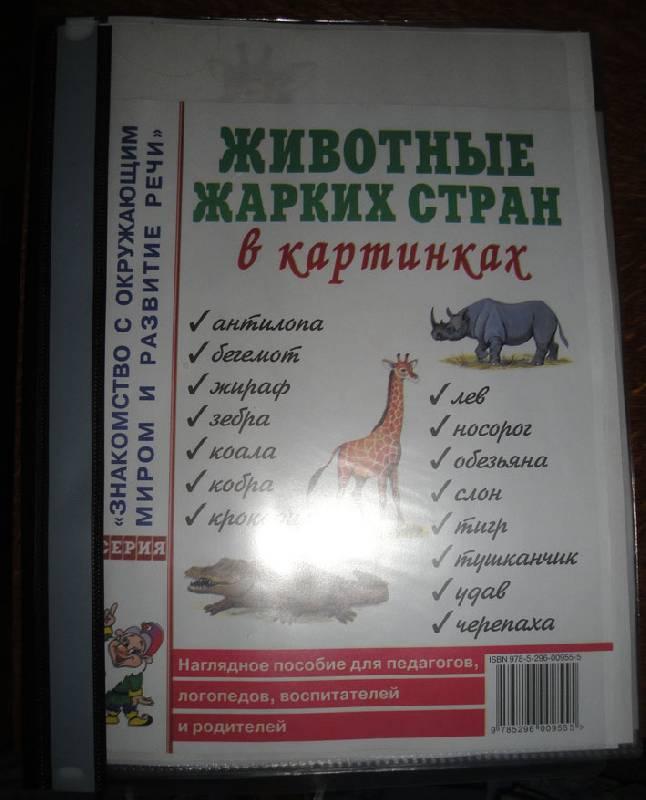 Фото антилопа для детей