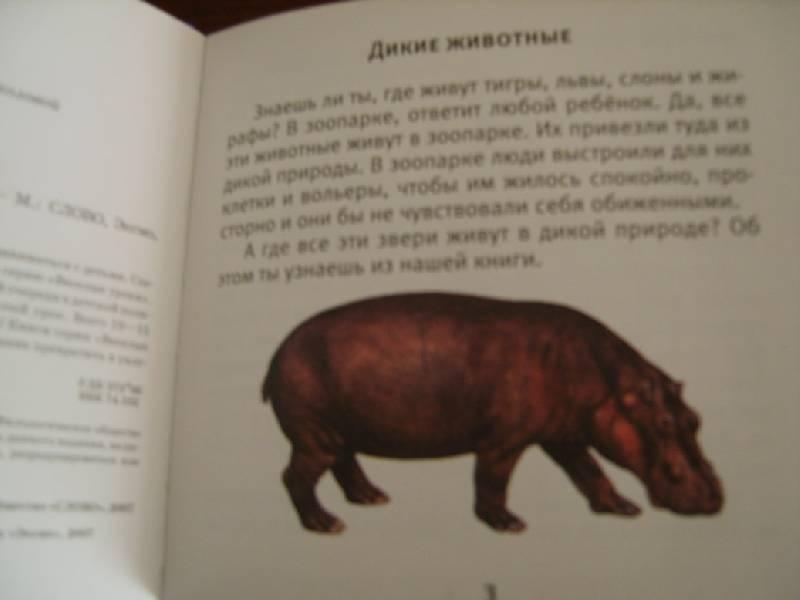 Иллюстрация 1 из 9 для Дикие животные - Галина Шалаева   Лабиринт - книги. Источник: Tatka