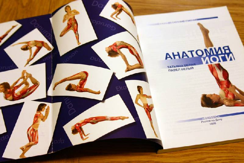 Иллюстрация 1 из 13 для Анатомия йоги - Белый, Белая | Лабиринт - книги. Источник: Иванна
