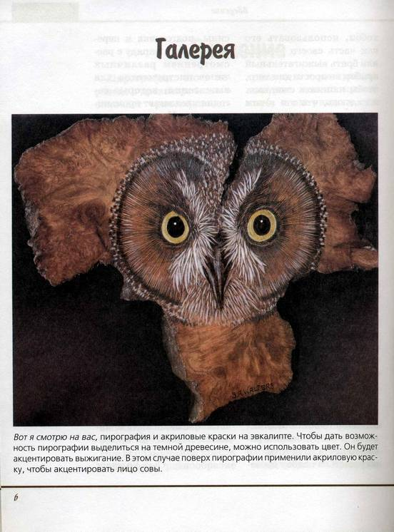 Иллюстрация 1 из 30 для Пирография, или искусство выжигания по дереву - Сью Уолтерс | Лабиринт - книги. Источник: * Ольга *