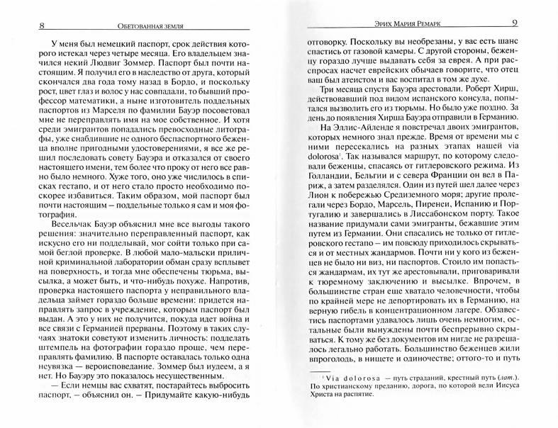 Иллюстрация 1 из 6 для Земля обетованная - Эрих Ремарк | Лабиринт - книги. Источник: Andriana