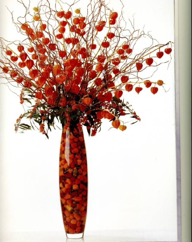 Иллюстрация 1 из 2 для Современная аранжировка цветов - Пола Прайк | Лабиринт - книги. Источник: ТТ