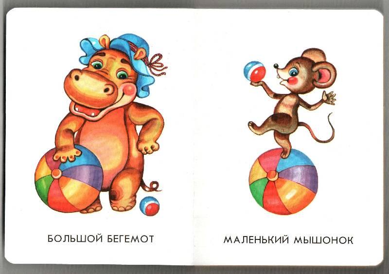 Иллюстрация 1 из 16 для Чистюля, грязнуля? 22 картинки | Лабиринт - книги. Источник: Апельсинка