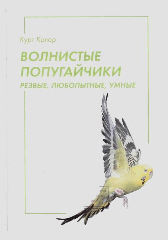 Иллюстрация 1 из 14 для Волнистые попугайчики - Курт Колар | Лабиринт - книги. Источник: Юта