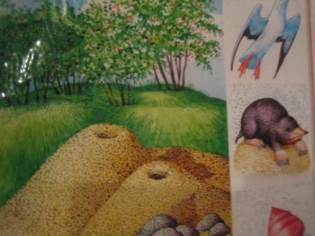 """Иллюстрация 1 из 18 для Набор карточек к игре """"В мире животных""""   Лабиринт - игрушки. Источник: Марита"""