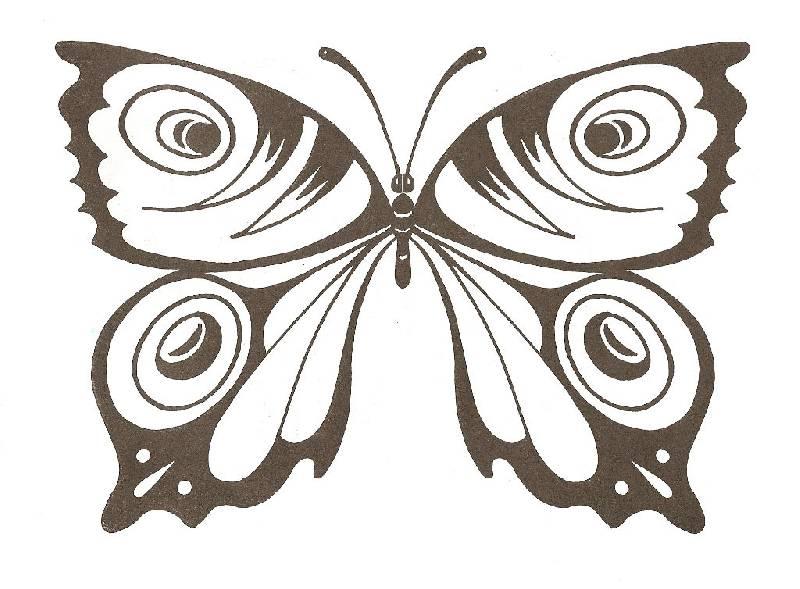 Картинки бабочек и цветов раскраски