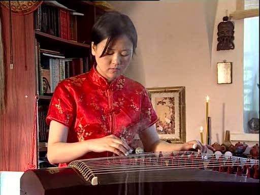 Иллюстрация 1 из 6 для Фэн-шуй. Исскуство гармонии (DVD) - Григорий Чинцов | Лабиринт - видео. Источник: Флинкс