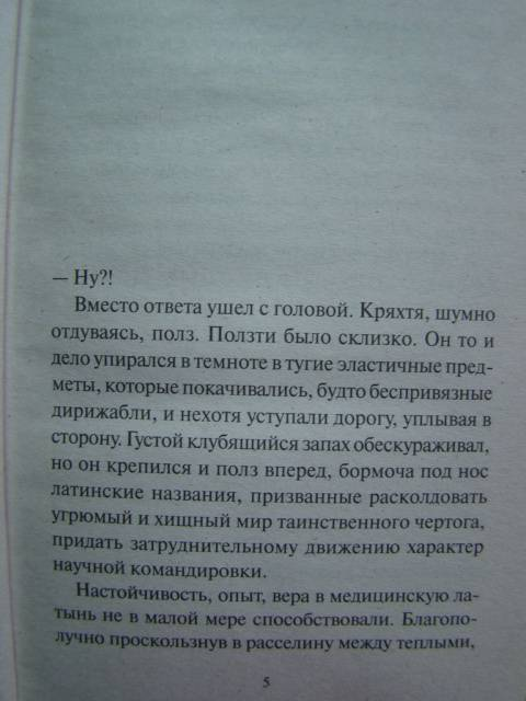 Иллюстрация 1 из 15 для Русская красавица - Виктор Ерофеев | Лабиринт - книги. Источник: D.OLGA