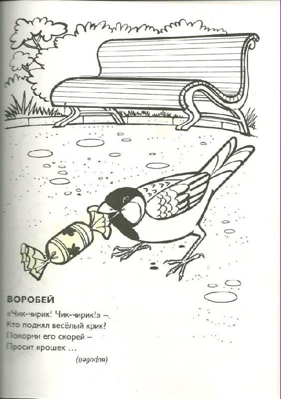 Иллюстрация 1 из 2 для Раскраски. Веселые птички - Владимир Борисов | Лабиринт - книги. Источник: Кин-дза-дза