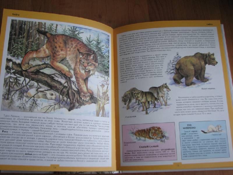 Иллюстрация 1 из 31 для Атлас животных   Лабиринт - книги. Источник: москвичка