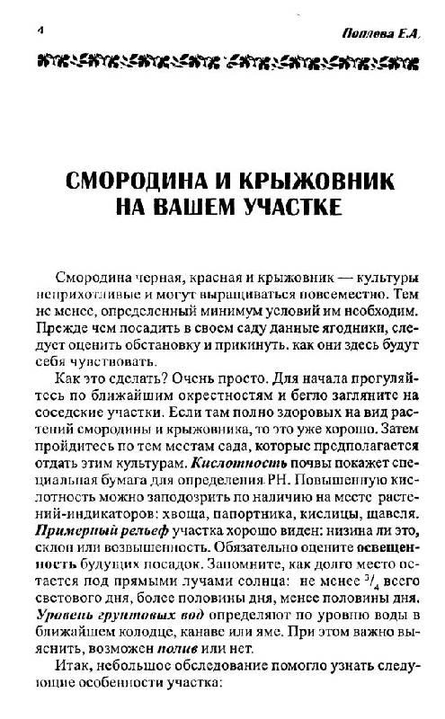 Иллюстрация 1 из 15 для Смородина и крыжовник - Елена Поплева | Лабиринт - книги. Источник: Юта