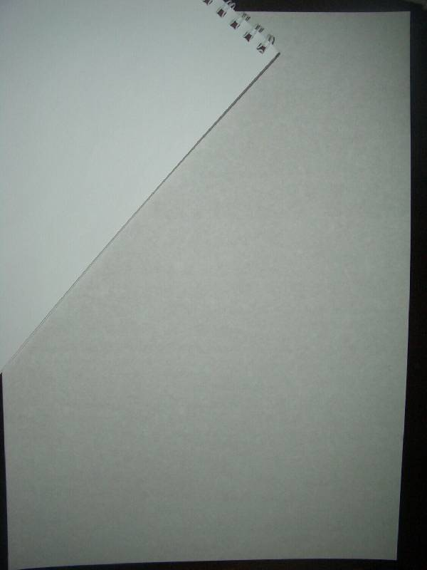 Иллюстрация 1 из 2 для Белый картон А4 8 листов (БК2878)   Лабиринт - канцтовы. Источник: Mex-mex