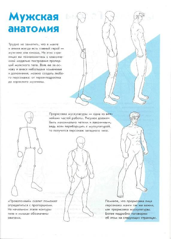 Иллюстрация 1 из 15 для Манга-мания. Юноши и мужчины | Лабиринт - книги. Источник: Юта