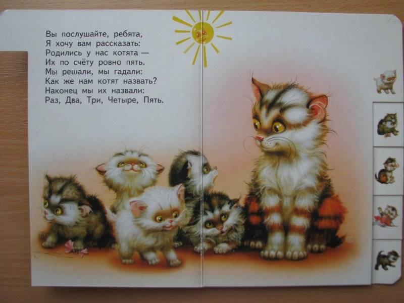 Иллюстрация 1 из 13 для Котята - Сергей Михалков | Лабиринт - книги. Источник: tash-ek