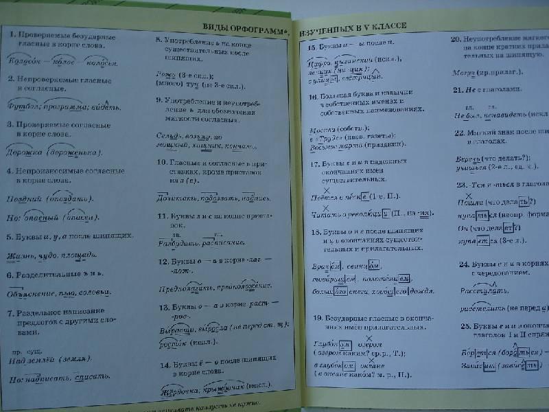 Иллюстрация 1 из 13 для Русский язык. 7 класс: учебник для общеобразовательных учреждений - Баранов, Тростенцова, Ладыженская | Лабиринт - книги. Источник: Nett