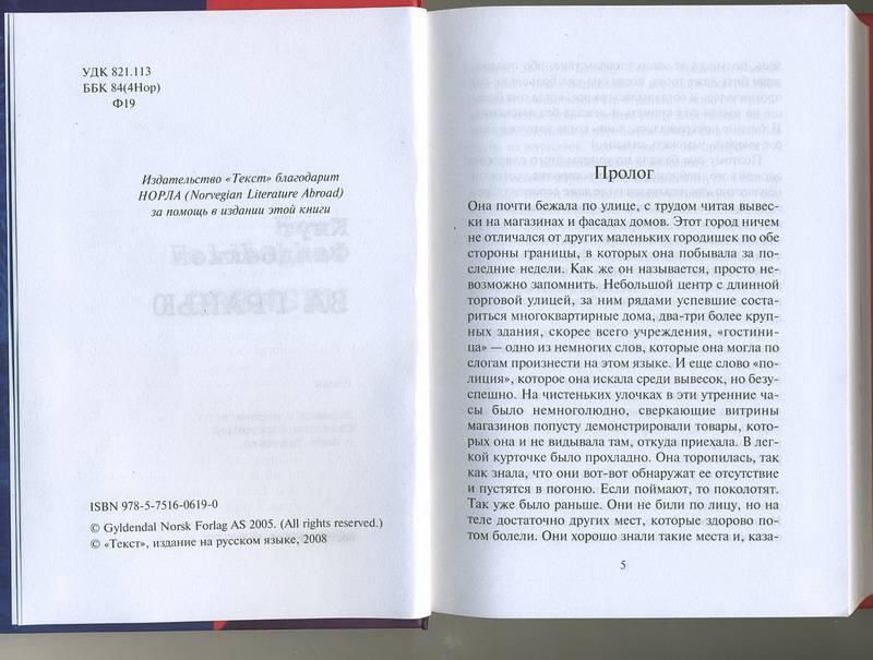Иллюстрация 1 из 8 для За гранью - Кнут Фалдбаккен | Лабиринт - книги. Источник: Machaon