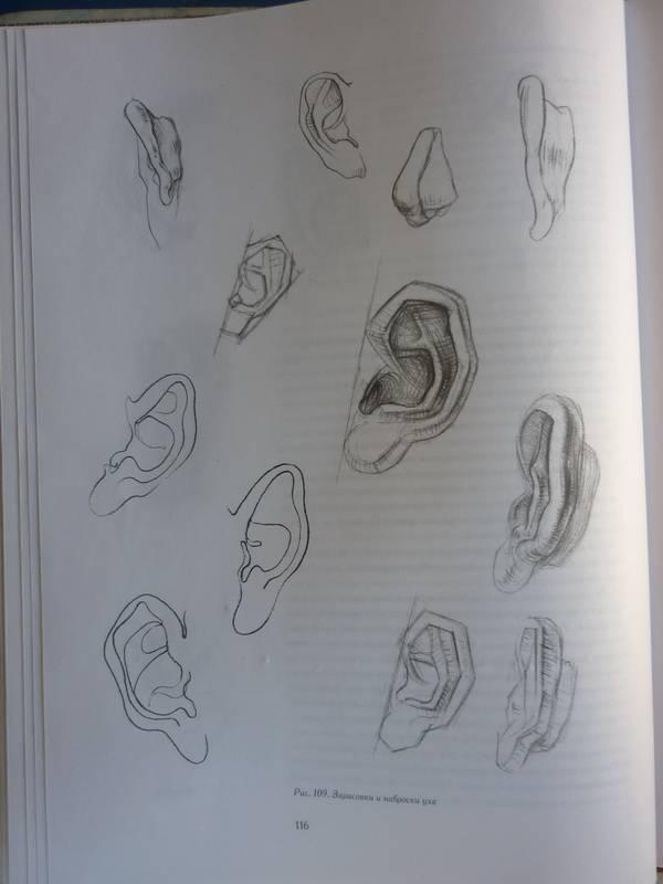Книга рисунок человека скачать