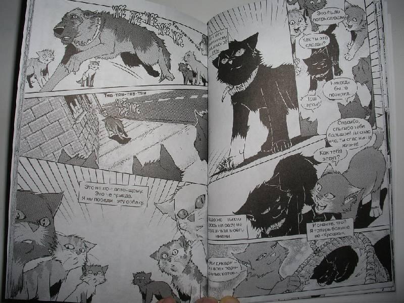 Коты воители бич по комиксам