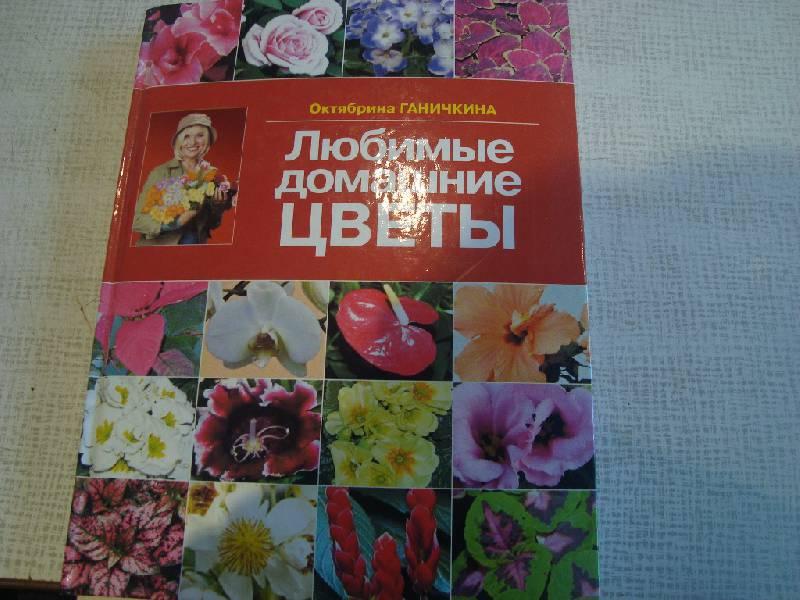 Иллюстрация 1 из 11 для Любимые домашние цветы - Ганичкина, Ганичкин   Лабиринт - книги. Источник: Константин Александрович