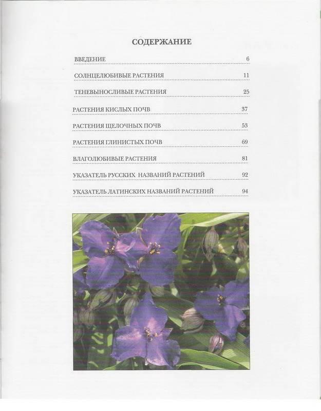 Иллюстрация 1 из 9 для Как подобрать садовые растения | Лабиринт - книги. Источник: Ялина