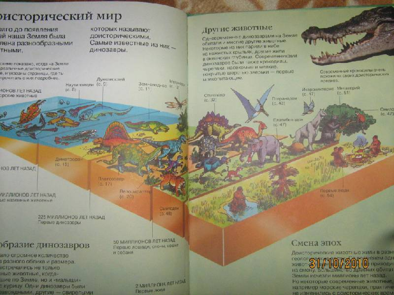 Иллюстрация 1 из 7 для Детская энциклопедия динозавров - Сэм Тэмплин | Лабиринт - книги. Источник: Волков  Антон