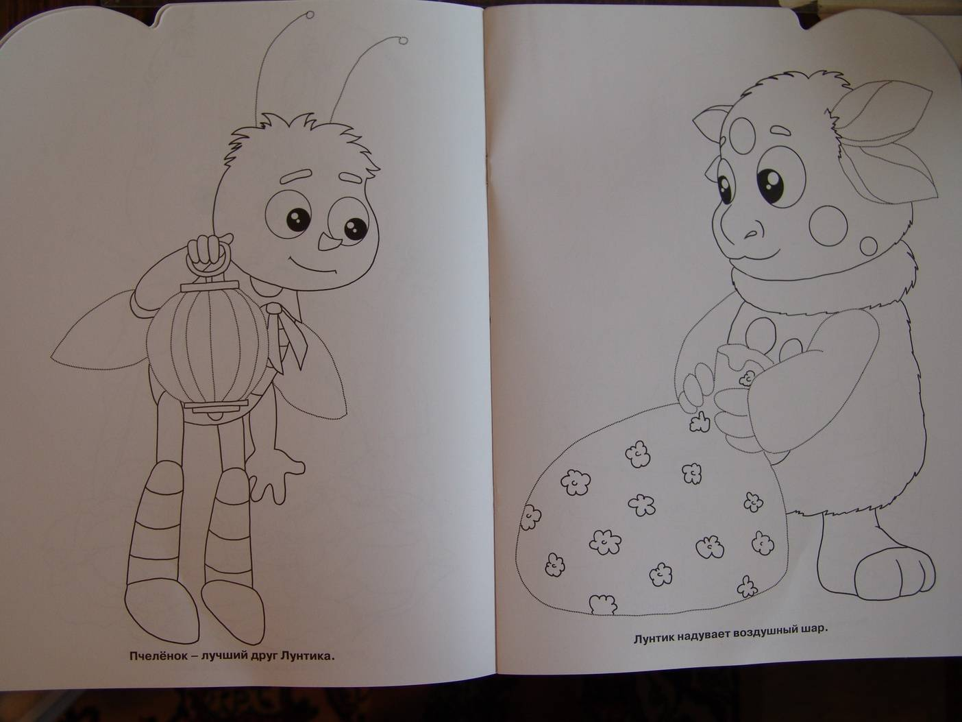Иллюстрация 1 из 5 для Умная раскраска. Лунтик и его друзья (№ 0620)   Лабиринт - книги. Источник: Лаванда