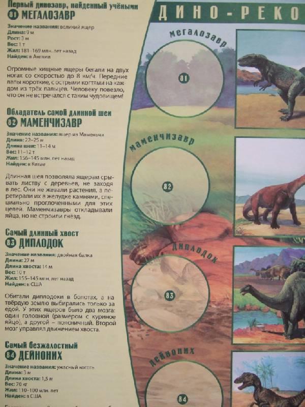 Иллюстрация 1 из 21 для Динозавры и другие доисторические животные. Атлас с наклейками - Наталья Преображенская | Лабиринт - книги. Источник: Klyukofka