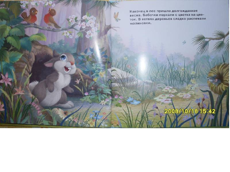 Иллюстрация 1 из 7 для Мои милые зайчата. Зайчата | Лабиринт - книги. Источник: Марта