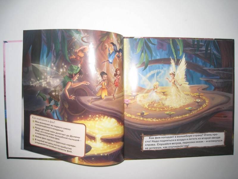 Иллюстрация 1 из 5 для Феи. Путеводитель по Долине Фей | Лабиринт - книги. Источник: Ari-Alisa