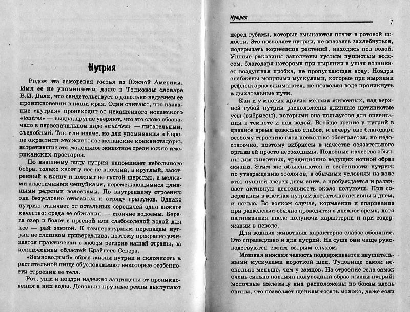 Иллюстрация 1 из 10 для Нутрии: породы, разведение, содержание, уход - Н. Голонзко | Лабиринт - книги. Источник: Росинка
