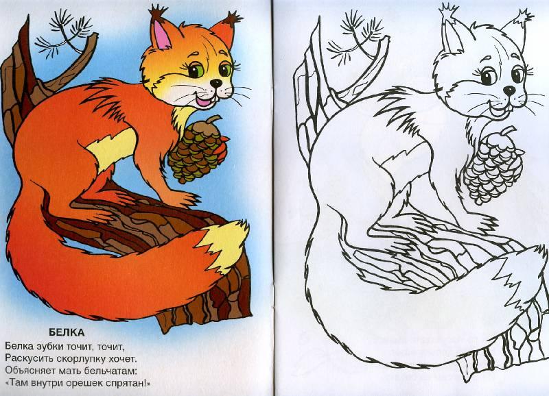 Иллюстрация 1 из 10 для Ребятам о зверята - Т. Коваль | Лабиринт - книги. Источник: Росинка