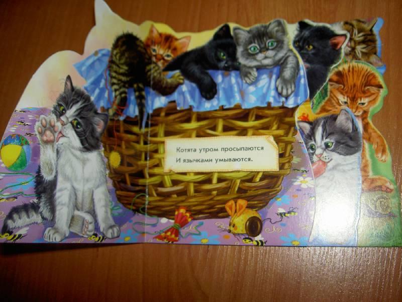 Иллюстрация 1 из 5 для Кошка и котята - Ринат Курмашев   Лабиринт - книги. Источник: hellgirl