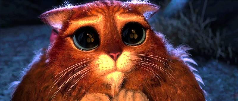 Иллюстрация 1 из 16 для Шрек навсегда (DVD) - Майк Митчелл | Лабиринт - видео. Источник: Карпов  Павел
