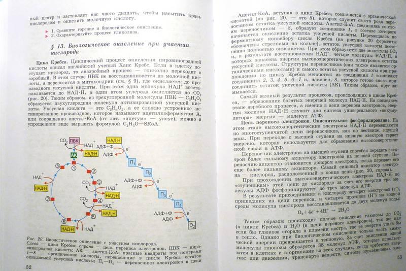 Биологии беляев класс 2001 по 10-11 гдз
