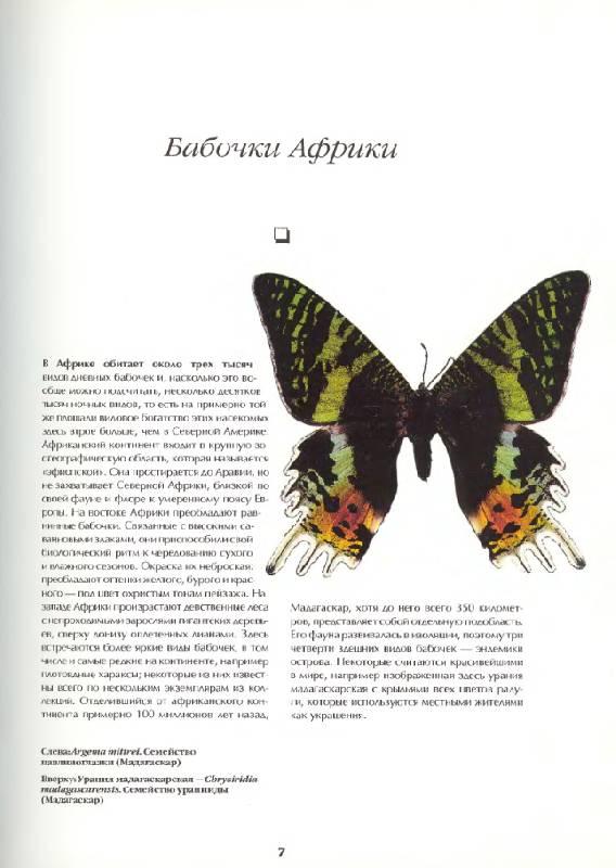 Иллюстрация 1 из 12 для Бабочки мира. Издание 2-е, стереотипное - Ален Эд | Лабиринт - книги. Источник: Анна Викторовна
